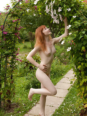 Lovely redhead babe Rochelle A shows off her hairy ginger cunt